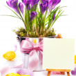 Colorful painted easter eggs and spring flowers — Stock Photo #9744004