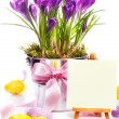 Colorful painted easter eggs and spring flowers - Stockfoto