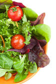 Bowl of fresh green salad with tomatoes — Stock Photo