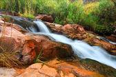 Grand Canyon Cascades — Stock Photo