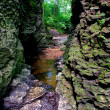 Stock Photo: Narrow Gorge in Bourbonnais Illinois