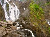 Barron falls - квинсленд, австралия — Стоковое фото