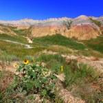 Badlands National Park - USA — Stock Photo #8016136