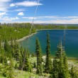 Duck Lake in Yellowstone - Stock Photo