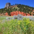 Devils Tower in Wyoming - Stock Photo