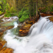 Glacier National Park Waterfall — Stock Photo #8017394