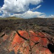 Craters of Moon National Monument — Stock Photo #8017429