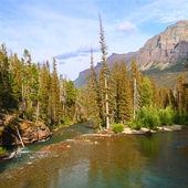 Saint Mary Creek - Glacier NP — Stock Photo