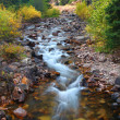 Pristine Montana Stream — Stock Photo