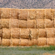 Hay Bale Background — Stock Photo