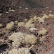 Amboy Crater National Natural Landmark — Foto de stock #8029853