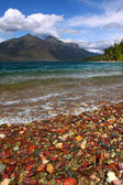 Lake mcdonald van glacier park — Stockfoto