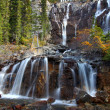 Tangle Falls - Jasper Park — Stock Photo