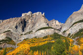 Fall Foliage in Banff Park — Stock Photo