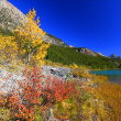 Stock Photo: Waterfowl Lakes in Banff Park