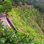 Kuranda Scenic Railway - Australia — Stock Photo #8248895