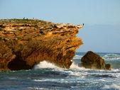скалистый берег в штате виктория, австралия — Стоковое фото