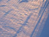 Fondo de nieve de invierno — Foto de Stock
