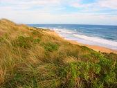 Beach in Victoria, Australia — Stock Photo