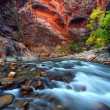 Stock Photo: Zion Canyon Narrows