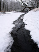 Zimowa scena strumień w illinois — Zdjęcie stockowe