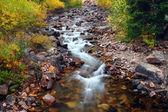 美丽的蒙大拿州流现场 — 图库照片