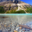 Stock Photo: Peyto Lake Scenery
