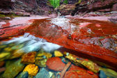 Red Rock Canyon Waterton Lakes Park — Stock Photo