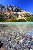 Peyto lake landschap — Stockfoto