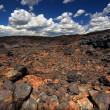 Craters of Moon National Monument — Stock Photo #9697122
