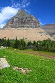 Logan Pass - Glacier National Park — Stock Photo