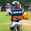 On the Sidelines, Little League Football — Stock Photo #8461424