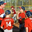 ������, ������: Coaching Youth League Baseball