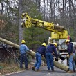 Powerline Repairs — Stock Photo