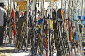 Snow Skis at Resort — Stock Photo