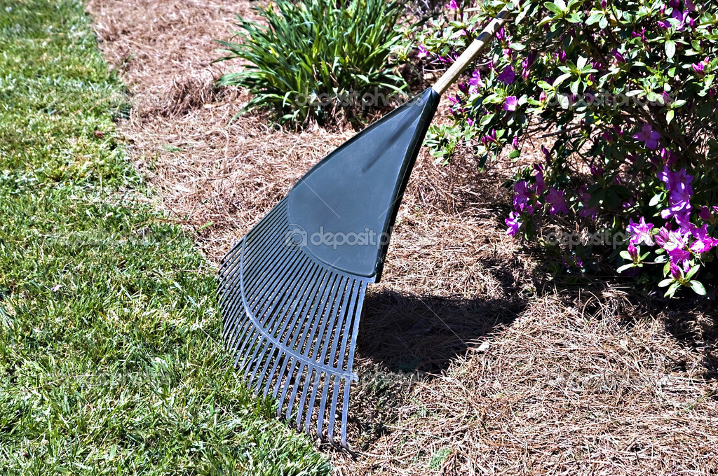 A rake at the edge of a grassy lawn, concept of yard work or maintenance.  Stock Photo #9766611