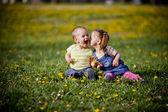 Enfants dans le domaine — Photo