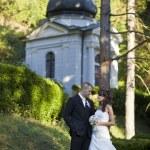 Wedding couple — Stock Photo #8609261