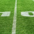 Royalty-Free Stock Photo: American football field