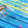 Foto Stock: Swimmers