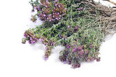 A bunch of rosemary — Stock Photo