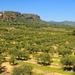 Mont-roig, Tarragona - Stock Photo