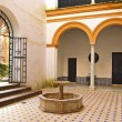 Andalusian patio — Stock Photo #10278837