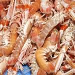 Seafood — Stock Photo #10279102