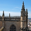 Seville Cathedral — Stock Photo #10279412