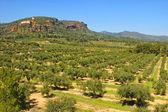 Mont-roig, Tarragona — Stock Photo