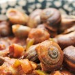 Spanish cooked snails in sauce — Stock Photo