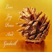 Love, joy, peace and goodwill — Stock Photo