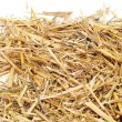 A pile of straw — Stockfoto