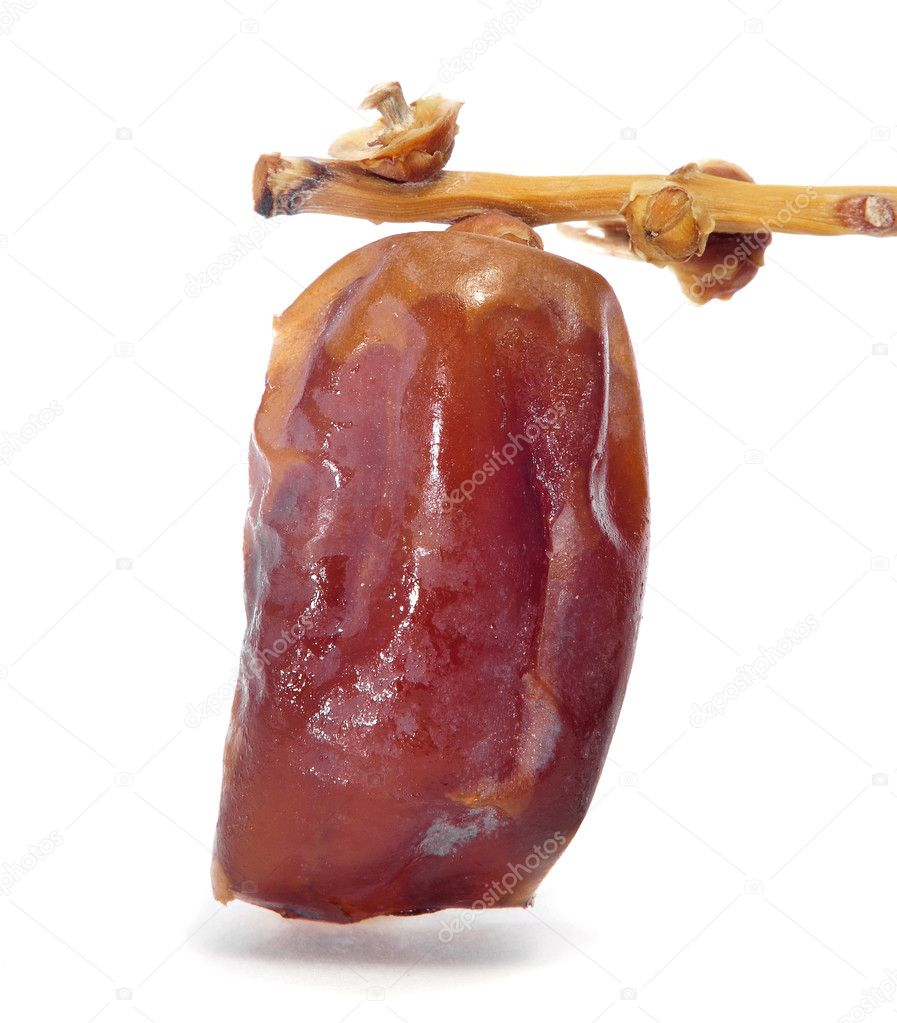 A dried date on a branch on a white background  Stock Photo #8421467